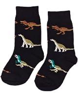 Country Kids Boy's Dinosaur Animal Print Calf Socks