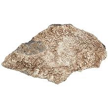 American Educational Crystalline Breccia Sedimentary Rock, 1Kg