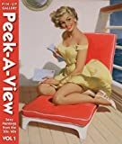 img - for Peek-a-View Pin-up Gallery: Sexy Paintings From The '30s-'60s Vol 1 by Collectors Press (2007) Paperback book / textbook / text book