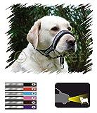 Hunde Erziehungshalsband FRS Reflektierend Antizug Halfter Erziehungsgeschirr
