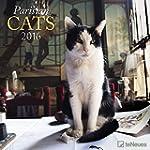 Paris & Cats 2016- Brosch�renkalender...