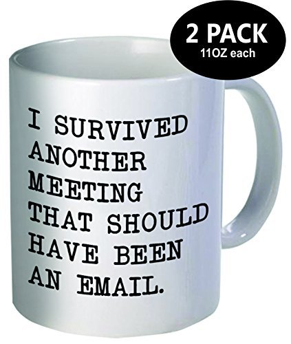 Pack of 2 - I survived another meeting that should have been an email - 11OZ ceramic coffee mugs - Best funny and inspirational gift (Baby Bird Hair Dryer compare prices)