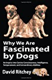 Why We Are Fascinated by Dogs