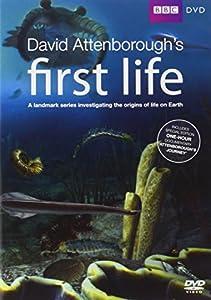 David Attenborough's First Life [DVD]