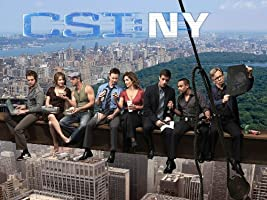 CSI: NY, Season 05