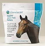 Duralactin Equine Joint Plus (3.75 Pounds)