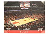 Chicago Bulls Stadium 28 x 22 Canvas Wall Art