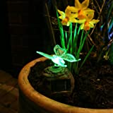 Solar Powered LED Novelty Rock Light (Butterfly)