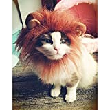Fashion Pet Dog Cat Lion Wigs Mane Hair with ears Festival Fancy Costume size S