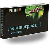 Fliptomania Monarch Butterfly Flipbook