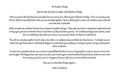 Rainbow Card Company Rainbow Bridge Pet Sympathy Card with Envelope