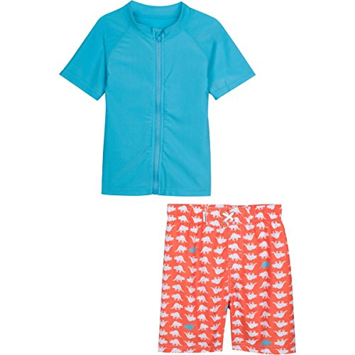 SwimZip¨ Baby Boy Zipper Long Sleeve Rash Guard Swimsuit Set DinoMite Gray 3-6 Month