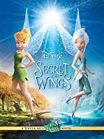 Secret Of The Wings Disney
