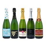 本格シャンパン製法の極上の泡5本セット((W0A5B2SE))(750mlx5本ワインセット)