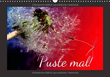 Puste mal! (Wandkalender 2014 DIN A3 quer): Edle Pusteblumen (Monatskalender, 14 Seiten)