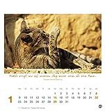 Image de Ich wünsch dir Gelassenheit Postkartenkalender - Kalender 2017