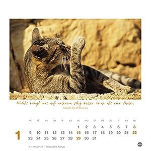 Ich wünsch dir Gelassenheit Postkartenkalender - Kalender 2017