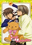 Junjo Romantica: Season 1 (ep.1-12) [Import]