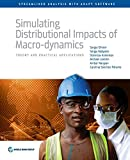 img - for Simulating Distributional Impacts of Macro-dynamics: Theory and Practical Applications (Streamlines Analysis With Adept Software) book / textbook / text book