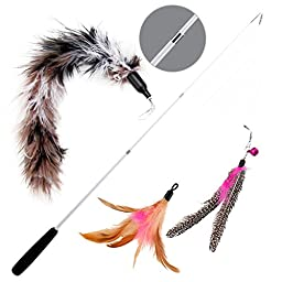Wisspet Teaser Cat Toys Bird Catcher Interactive Wand Fishing Pole with 3 Feather Refill Replacement Pack