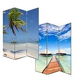 Foto-Paravent Paravent Raumteiler Trennwand M68 ~ 180x120cm, Strand