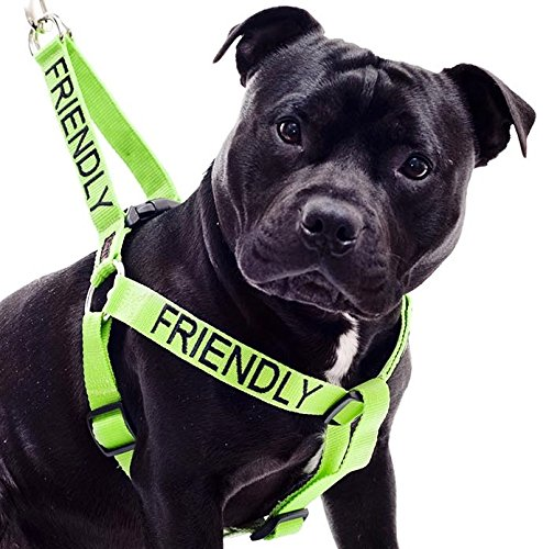 FRIENDLY-Green-Color-Coded-Non-pull-Dog-Harness-Known-As-Friendly-PREVENTS-Accidents-By-Warning-Others-of-Your-Dog-in-Advance