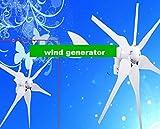 GOWE 300w wind generator +200w Mono solar panel +hybrid controller +2pcs 28w LED street light (56w)