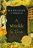img - for A Wrinkle in Time (A Wrinkle in Time Quintet) book / textbook / text book
