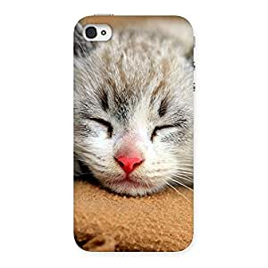 Premium Sleeping Cat Multicolor Back Case Cover for iPhone 4 4s