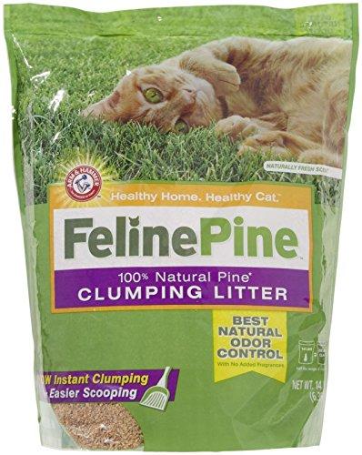 good cheap cat litter