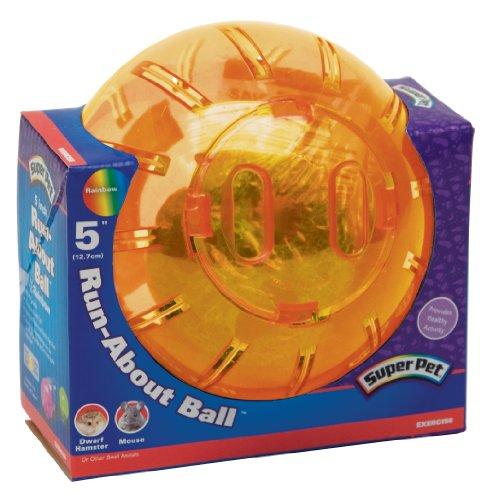 Kaytee-Dwarf-Hamster-Mini-Run-About-Exercise-Ball