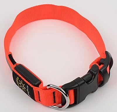 LED Nylon Night Safety Dog Collar by Nite Ize - Orange - Large