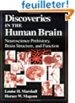 Discoveries in the Human Brain: Neuro...