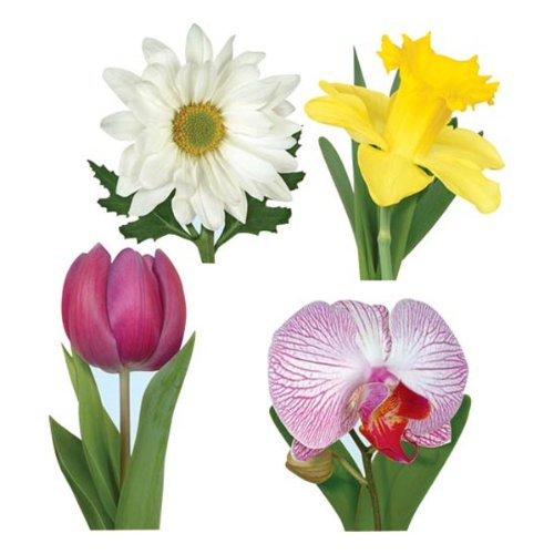 Pkgd Classic Flower Collection   (4/Pkg)