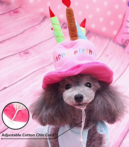 CHAMPURE Pet Happy Birthday Hat For Dogs And