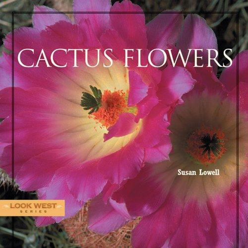 Cactus Flowers (Look West Series)
