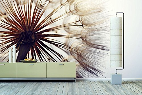 vlies fototapete pusteblume preisvergleiche erfahrungsberichte und kauf bei nextag. Black Bedroom Furniture Sets. Home Design Ideas