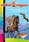 Le château magique, Tome 6 : La princesse Chenoa et le Grand Esprit Soleil par Chapman