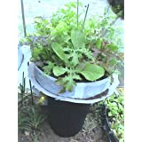 Self watering low rotating by funpots patio garden self watering low