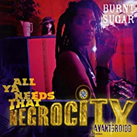 All Ya Needs That Negrocity [Explicit]