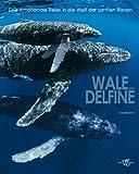 Wale und Delfine: Eine emotionale Reise in die Welt der sanften Riesen (Natur, Tiere)