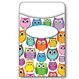 Carson Dellosa CD-121011BN Colorful Owls Library Pockets, MultiPk 6 Packs/CT