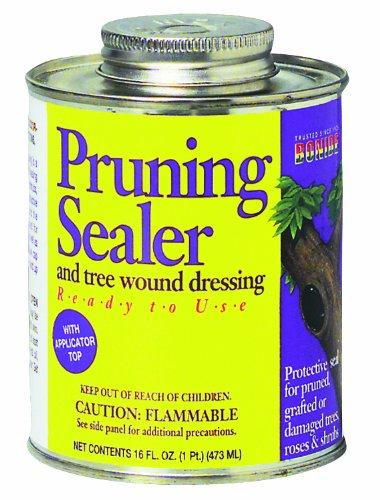 pruning-sealer-brush-top-pint-rmg4h4e54-e4r46t32500929