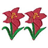 2 Pcs Flower Iron On Embroidery Fabric Applique Patch Red Green