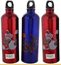 Beaut Stainless Steel Printed Water Bottle, 750 ml, Pack of 3