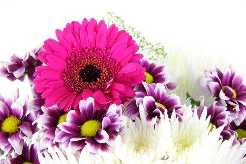 Happy Daisy Fresh Flower Bouquet