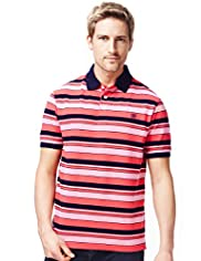 XXXL Blue Harbour Pure Cotton Varied Striped Polo Shirt