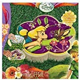 Disney Fairies Tinkerbell and the Great Fairy Rescue Create Your Own Glitter Memory Stone