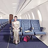 Trip Essentials Under-Seat, Folding Airline Pet Carrier (Green)