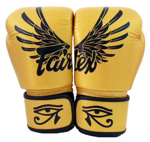 Fairtex Muay Thai Boxing Gloves BGV1 Limited Edition Falcon